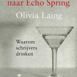 In 'Een uitstapje naar Echo Spring' vraagt Olivia Laing zich af 'Waarom schrijvers drinken'