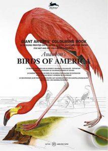 pepin-birds-2016