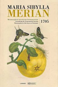 Maria-Sibylla-Merian-insecten-2016